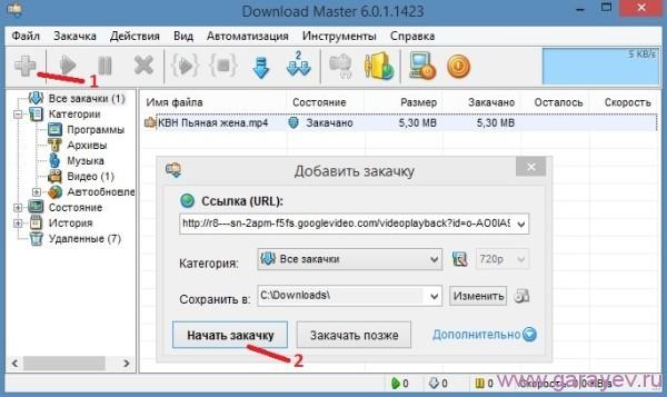 Download Master как скачать видео
